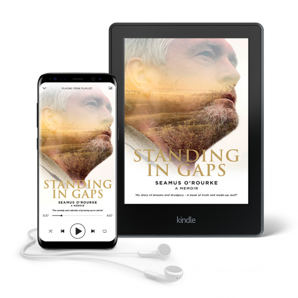 Standing in Gaps Kindle | Seamus O'Rourke | Big Guerilla Productions